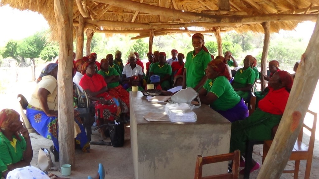 Women's Leadership Dialogues in Gangare, Southern Zimbabwe, Oct 2015. (Photo credit: Method Gundidza)